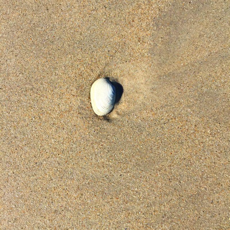 Sandstrand_Südafrika